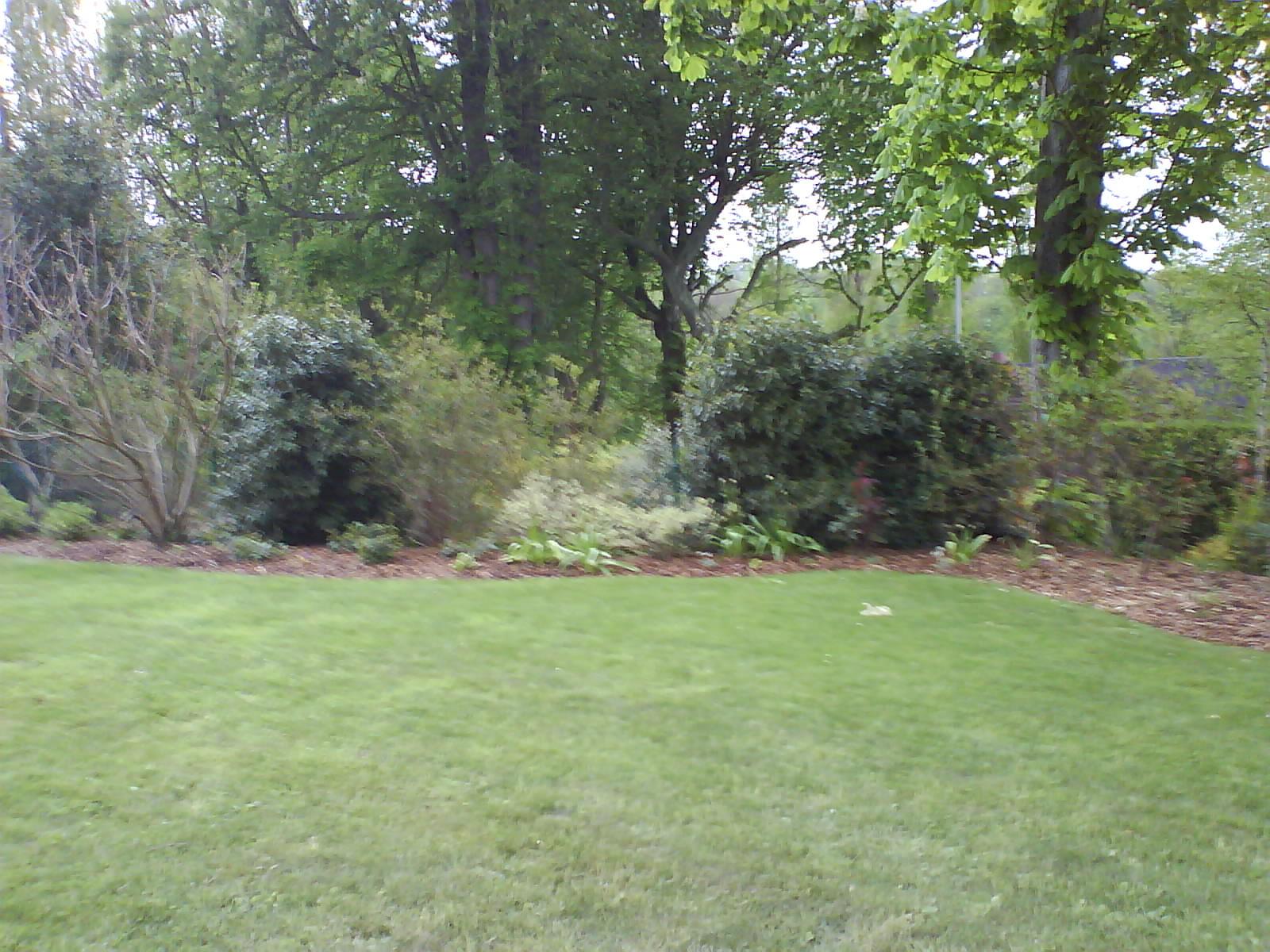 Tonte et entretien de massifs naturescence jardin for Tonte jardin